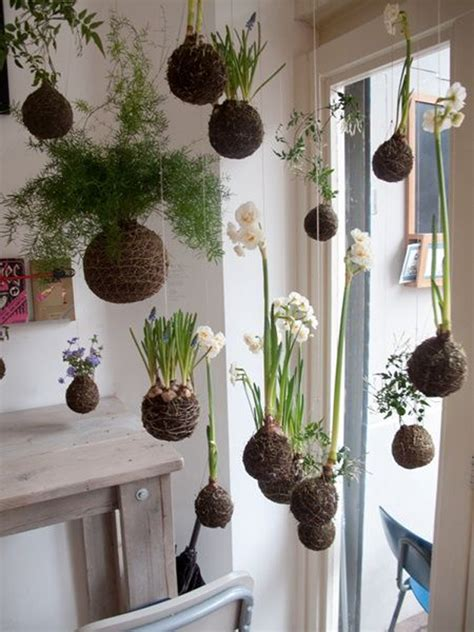 beautiful kokedama string garden ideas home design  interior