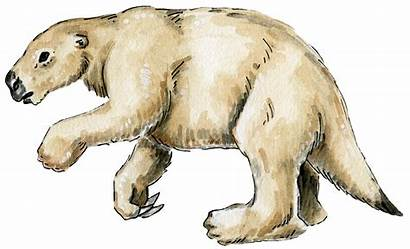 Sloth Age Ice Giants Ground Giant Tall