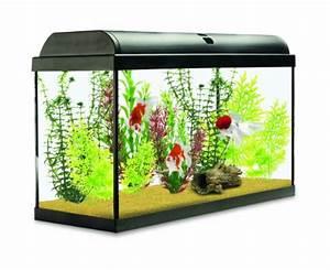 Liter Aquarium Berechnen : interpet aquaverse glass aquarium 65 litre snazzy pet ~ Themetempest.com Abrechnung