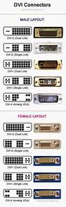 Electrical Engineering World  Dvi Connectors  Male