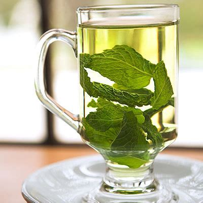 Image result for MINT TEA