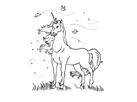 coloriage  dessin licorne licorne coloriage coloriage