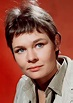 Inspirations ... Dame Judi Dench / LOOK YOUNGER, LOOK SLIMMER