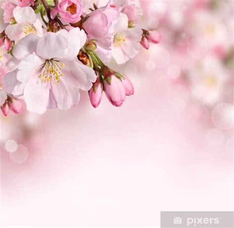 fototapete fr 252 hling blumen hintergrund mit rosa bl 252 te