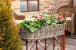 Balkon Sichtschutz Rattan : balkon pflanzkorb rattan wohnambiente shop ~ Markanthonyermac.com Haus und Dekorationen