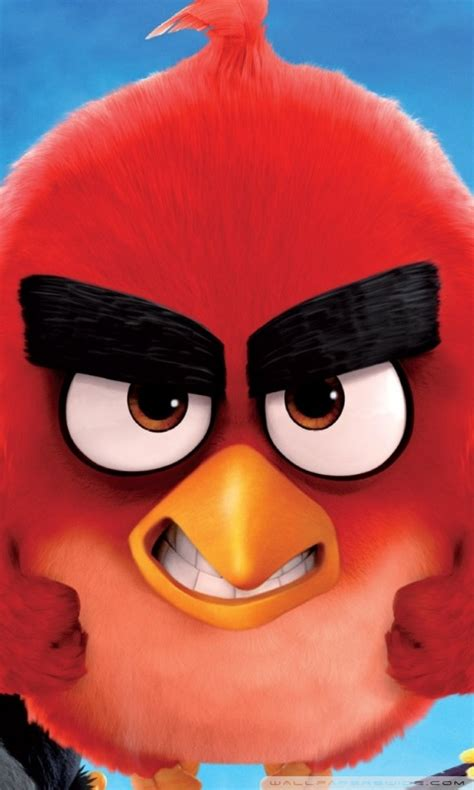 angry birds hd wallpapers  mobile gallery
