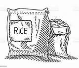 Rice Sack Drawing Vector Bag Sketch Illustration Clipart Terraces Clip Drawn Hand Draw Istockphoto Agriculture Banaue Drawings Istock Illustrations Opened sketch template