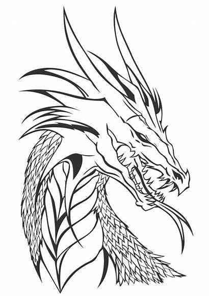 Wings Fire Coloring Pages Icewing Printable