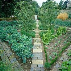 Vegetable Garden Designed As A Formal Parterre