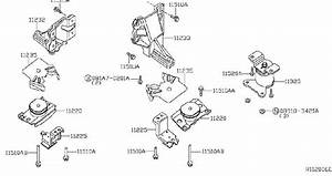 Nissan Xterra Automatic Transmission Mount  Rear   Bed