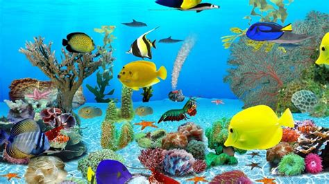 Aquarium Wallpaper Animated Free - animated aquarium wallpaper for windows 7 free