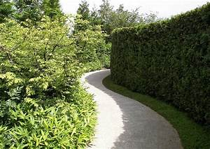 Berlin Japanischer Garten : berlin marzahn japanischer garten sichtschutzhecke ~ Articles-book.com Haus und Dekorationen