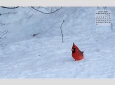 January Background Calendar – It's A Binary World 20