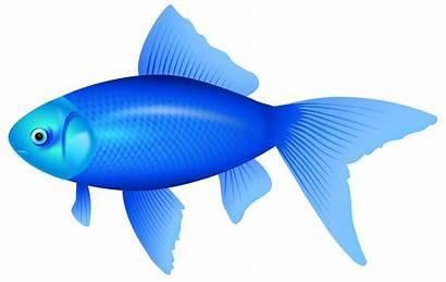Fish Clipart Cliparts Clip Clipartpng Clipartion Clipartmag