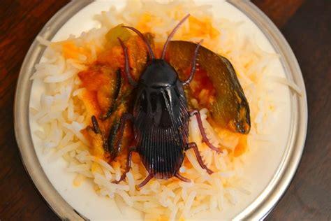 laurent mariotte tf1 recette cuisine recette cuisine aubergine ohhkitchen com