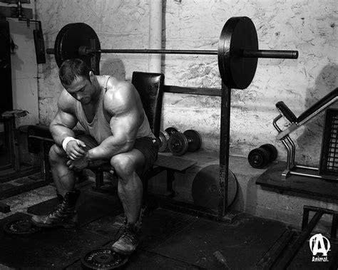 Animal Bodybuilding Wallpaper - animal pak bodybuilding forums 309453 wallpaper wallpaper