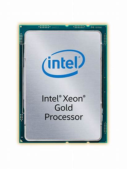 Xeon Gold Intel Purley Ovh Hg Serveurs