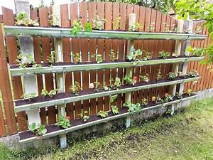 Dachrinne Selber Bauen : vertical garden bauen so pflanzt du erdbeeren in der dachrinne ~ Buech-reservation.com Haus und Dekorationen