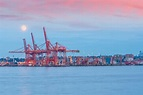 Grain bin collapses at Vancouver terminal - Supply ...