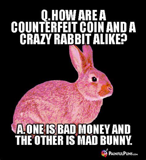 funny pet jokes animal puns pet peeves  painfulpunscom