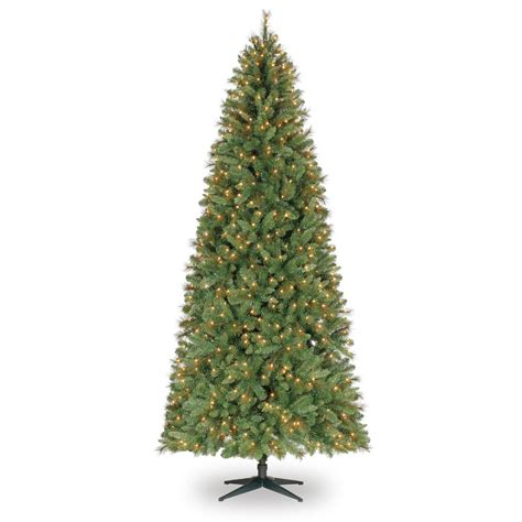 pencil trees christmas by ashland 9 ft pre lit slim willow pine artificial tree clear lights by ashland