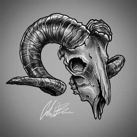 Ram skull Cráneo de carnero Cráneos y calaveras y Dibujos