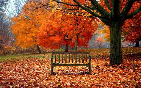 Fall Desktop Backgrounds Autumn Wallpaper by Autumn Wallpaper Autumn Wallpaper 35867744 Fanpop