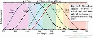 Are there three colors of light (RGB), or is it infinite ...