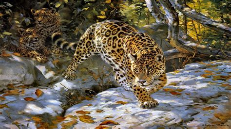Jaguar Animal Hd Wallpapers 1080p - jaguar wallpaper hd 01754 baltana