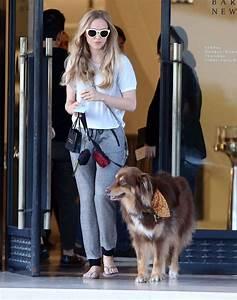 Amanda Seyfried Walking her dog -09 - GotCeleb