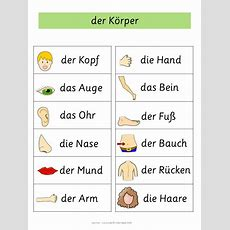 German Word Walls  Basic Vocabulary  Mein Körper  Aprender Alemán, Aleman Basico Y