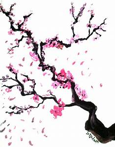 Drawn cherry blossom japenese - Pencil and in color drawn ...