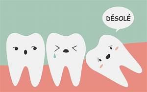 Symptome Dent De Sagesse : tous les sympt mes des dents de sagesse dents de sagesse ~ Maxctalentgroup.com Avis de Voitures