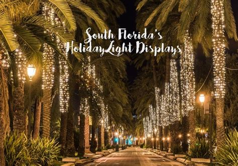 xmas lights in miami dade county get lit with broward county s lights