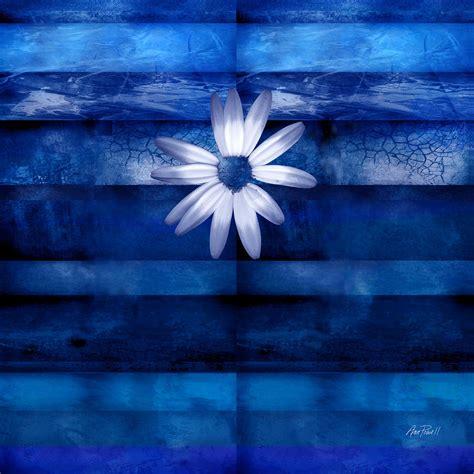 White Daisy On Blue Abstract Art Digital Art By Ann Powell