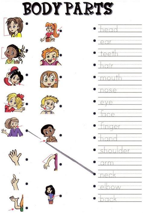 preschool parts printables tags parts of the