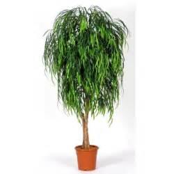 dã nisches design mã bel piante finte da arredo piante finte arredare con le piante finte