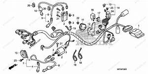 Honda Motorcycle 2008 Oem Parts Diagram For Wire Harness
