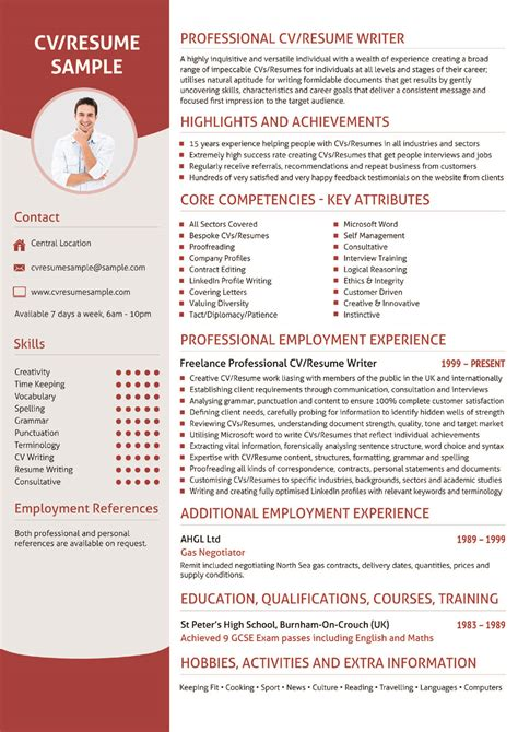 professional writing of cv