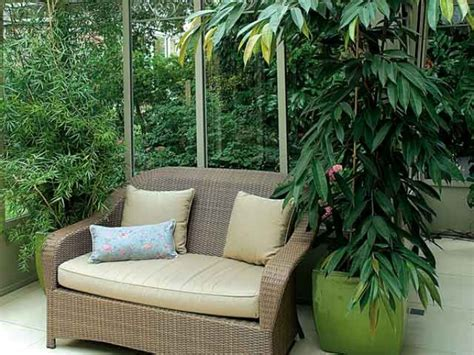 univers du canapé protéger les plantes de la véranda en hiver