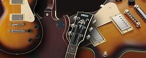 The Structure of the Electric Guitar:What kind of ...