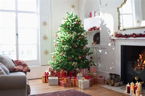 sugar water for christmas tree make a tree last longer a new trick