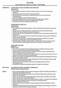 senior hr manager resume samples velvet jobs With senior hr manager resume sample