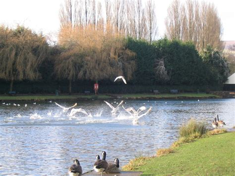 Cwmbran Boating Lake by File Cwmbran Boating Lake Jpg Wikimedia Commons
