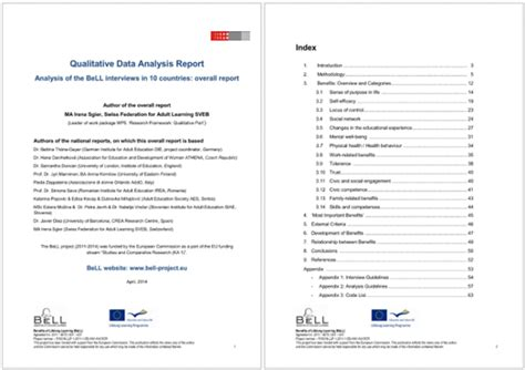 data analysis report template  formats    word
