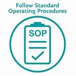Safety Sop Aviation Security Qatar Procedures Operating