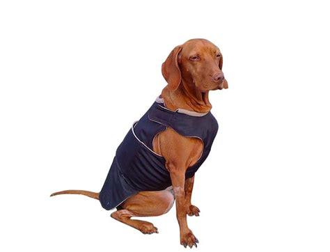 Vizsla Shedding Puppy Coat by Vizsla Pointer Winter Coat Warm Jacket Custom