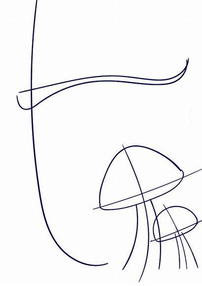 Draw Step Mushroom Drawing Line Learn Cartoon
