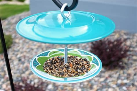 diy bird feeder 9 diy plans to make bird feeders going evergreen