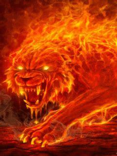 heard  fire tiger burned   orphanage
